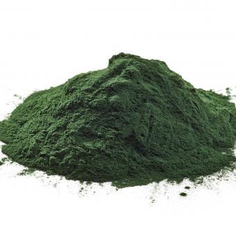 Chlorella en polvo orgánica